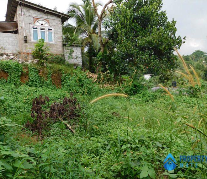 propertymate.lk Land for sale in Panadura 2