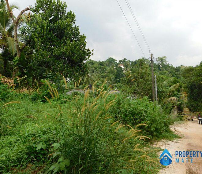 propertymate.lk Land for sale in Panadura 3