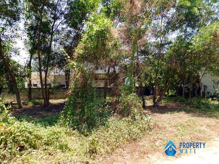 Propertymate.lk_land_for_sale_ekala_apr_13-04