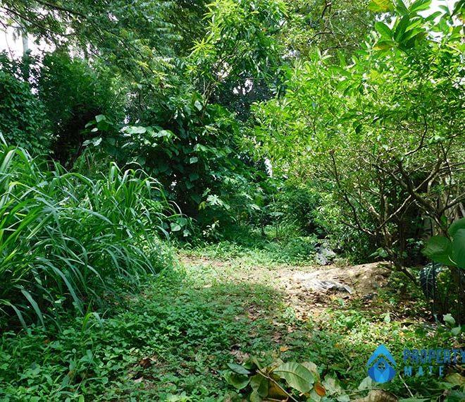 propertymate_lk_land_for_sale_kirindiwla_sep_21-04