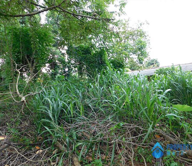 propertymate_lk_land_for_sale_kirindiwla_sep_21-05