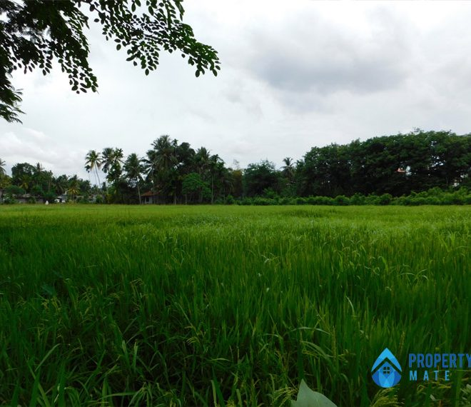 Land for sale in Athurugiriya Galwarusawa road facing paddy field 3