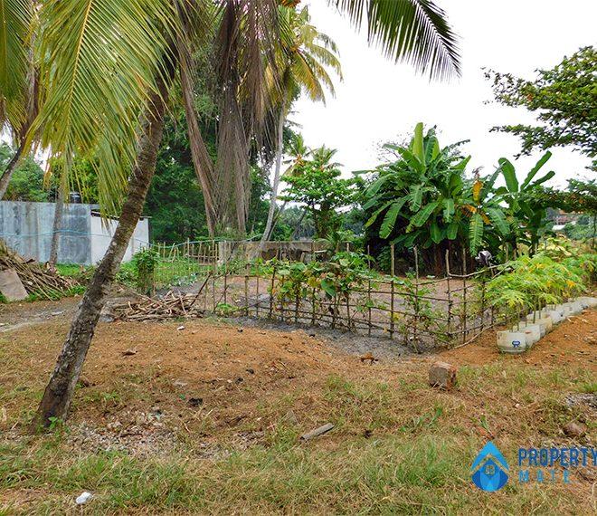 Land for sale in Mahara Kadawatha 1
