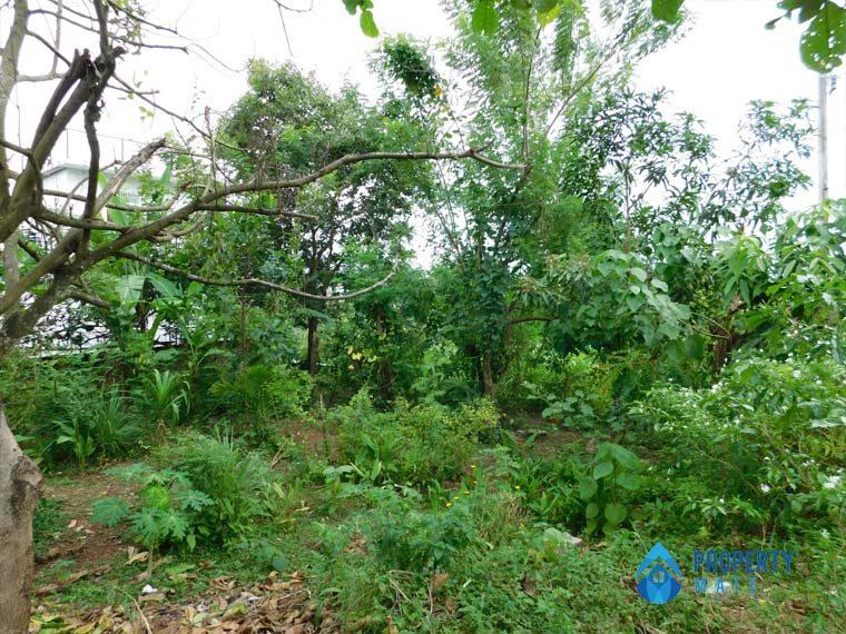 Land for sale in Piliyandala Siddamulla 2