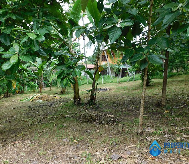 Land for sale in Ragama Peralanda 2