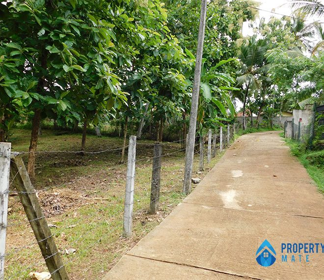 Land for sale in Ragama Peralanda 3