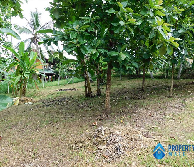 Land for sale in Ragama Peralanda