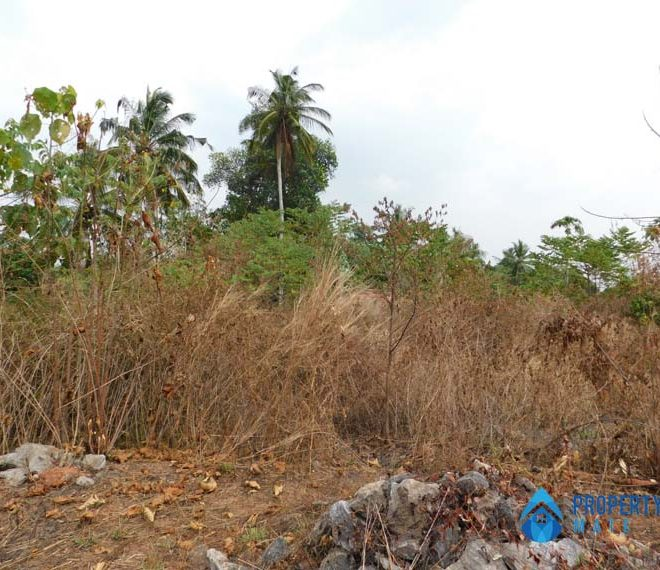 Land for sale in Udugampola Gampaha 03