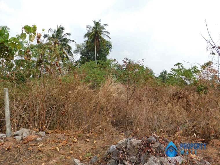 Land for sale in Udugampola Gampaha 03