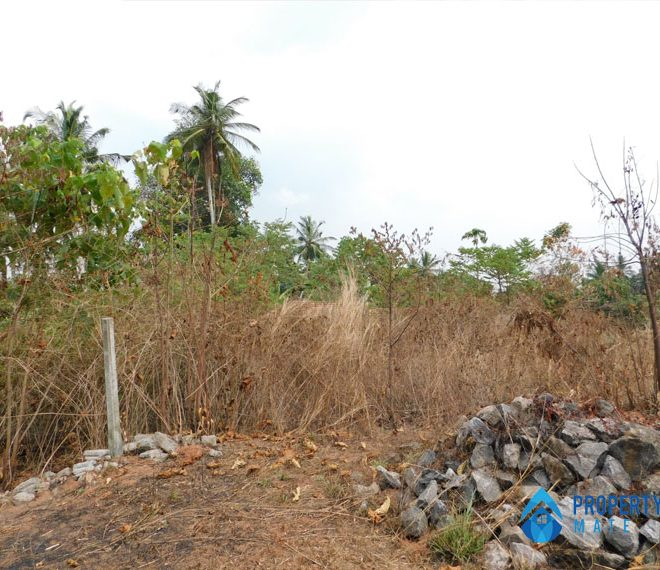 Land for sale in Udugampola Gampaha