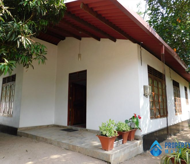Paddy field view house for sale in Minuwangoda